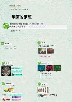 浙教版科学七年级下第一章1.6.1 细菌的繁殖.ppt
