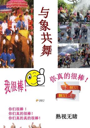 小学语文五年级人教版下册《与象共舞》.pptx