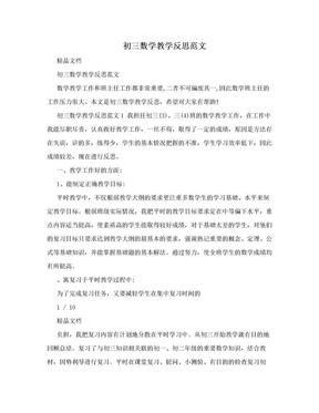 初三数学教学反思范文.doc