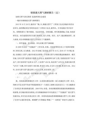镇镇通天然气调研报告(定).doc