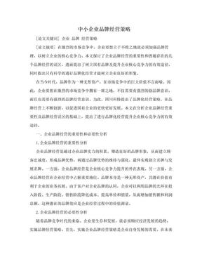 中小企业品牌经营策略.doc