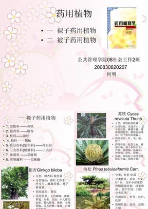 药用植物-近100种药用植物 近100种药用植物.ppt