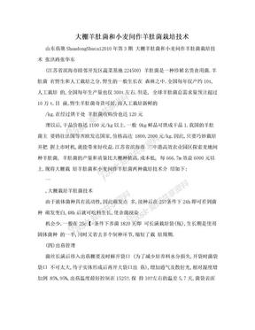 大棚羊肚菌和小麦间作羊肚菌栽培技术.doc