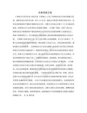 企业改制方案.doc