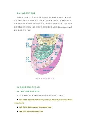 09内膜系统与膜运输.doc