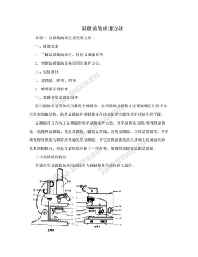 显微镜的使用方法.doc