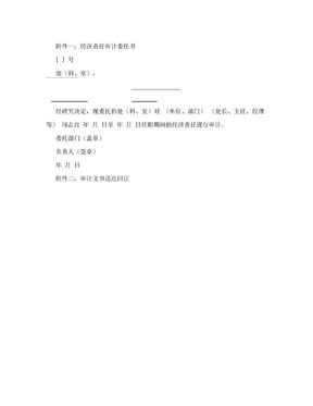 任期经济责任审计工作底稿模板.doc