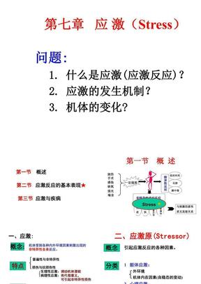 6_应激2(综合40).ppt
