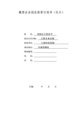 微型企业创业投资计划书(范文)