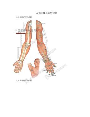 人体上肢正面穴位图.doc
