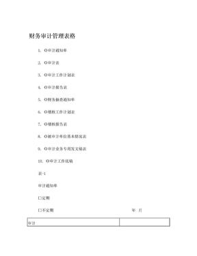 公司财务审计管理表格(10个表格).doc