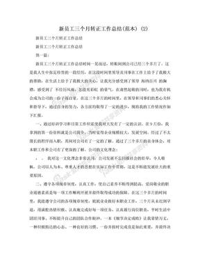 新员工三个月转正工作总结(范本) (2).doc