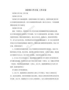 风控部工作计划_工作计划.doc