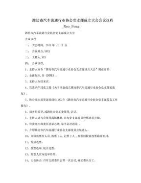 潍坊市汽车流通行业协会党支部成立大会会议议程_Neo_Peng.doc
