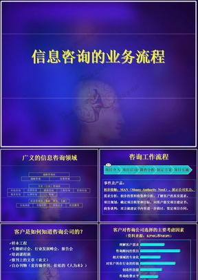 信息咨询业务流程.ppt