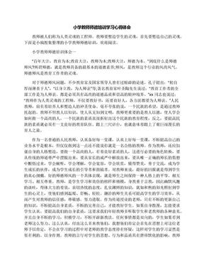 小学教师师德培训学习心得体会.docx