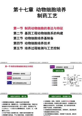 第十七章 动物细胞培养制药工艺.ppt