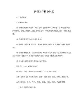 湖南省八项护理工作核心制度.doc