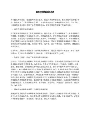青年教师培养情况总结.docx