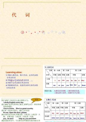 2011年中考英语专题课件_代词.ppt