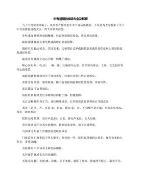 中考易错的成语大全及解释.docx