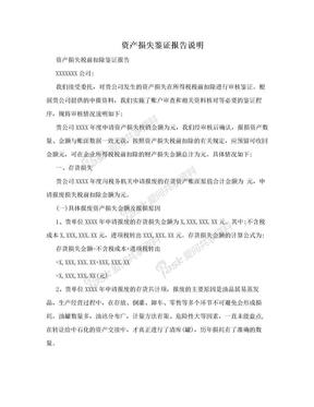 资产损失鉴证报告说明.doc