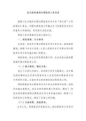 县自然资源局扫黑除恶工作总结.docx