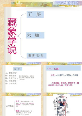 中医基础理论-脏腑学说.ppt