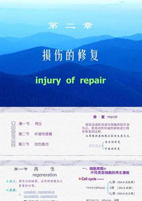 第二章  损伤的修复1.ppt