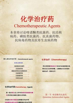 化学治疗药(全套课件194P)  PPT课件.ppt