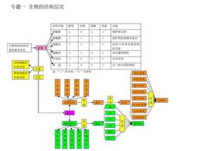 初二生物思维导图.pdf