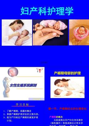 母婴--产褥期妇女的护理  PPT课件.ppt