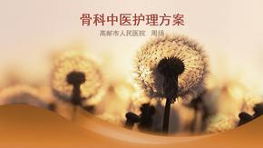 中医护理方案 ppt课件.pptx