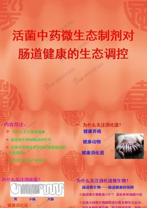 活菌中药微生态制剂对肠道健康的生态调控.ppt