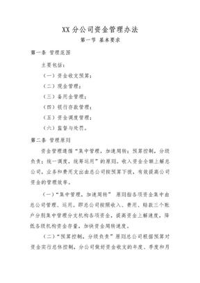 分公司资金管理办法规定.doc.doc