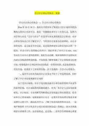 学习审计的心得体会  集锦.doc