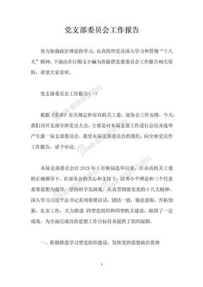 党支部委员会工作报告.docx
