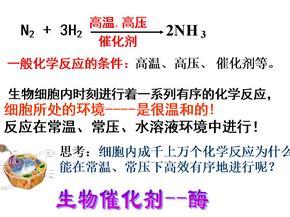 高中生物酶(修改).ppt
