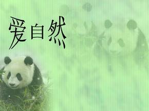 爱自然-保护动物