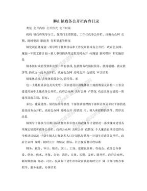 狮山镇政务公开栏内容目录