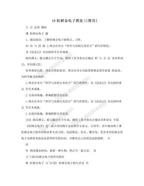 16松树金龟子教案1[教育]