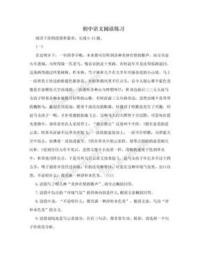 初中语文阅读练习