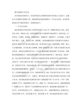 数字化城管工作总结.doc