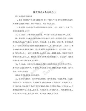 团支部委员会选举办法