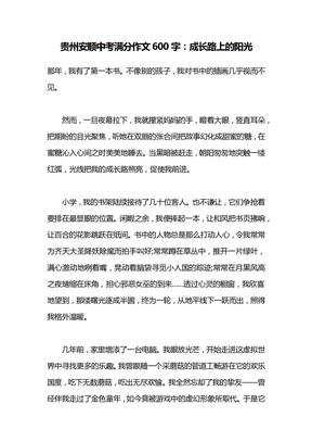 贵州安顺中考满分作文600字:成长路上的阳光