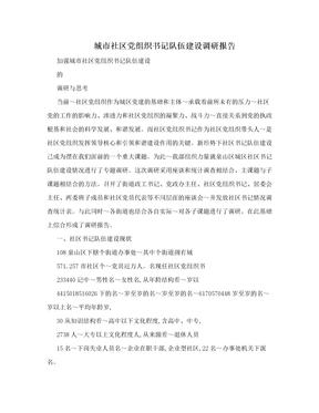 城市社区党组织书记队伍建设调研报告
