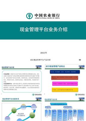 农行现金管理平台产品介绍 ppt课件