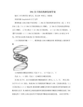 DNA分子的结构和复制学案