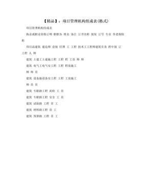 【精品】:项目管理机构组成表(格式)