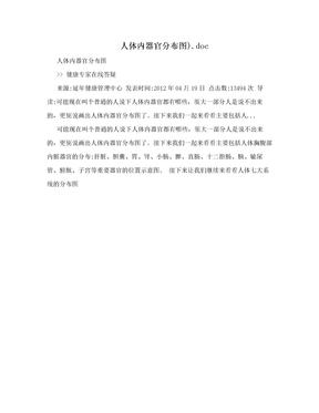 人体内器官分布图).doc